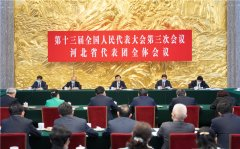 王沪宁在参加河北省代表团审议时强调